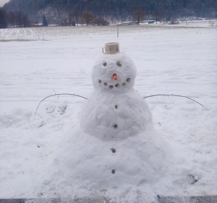 Snežne radosti