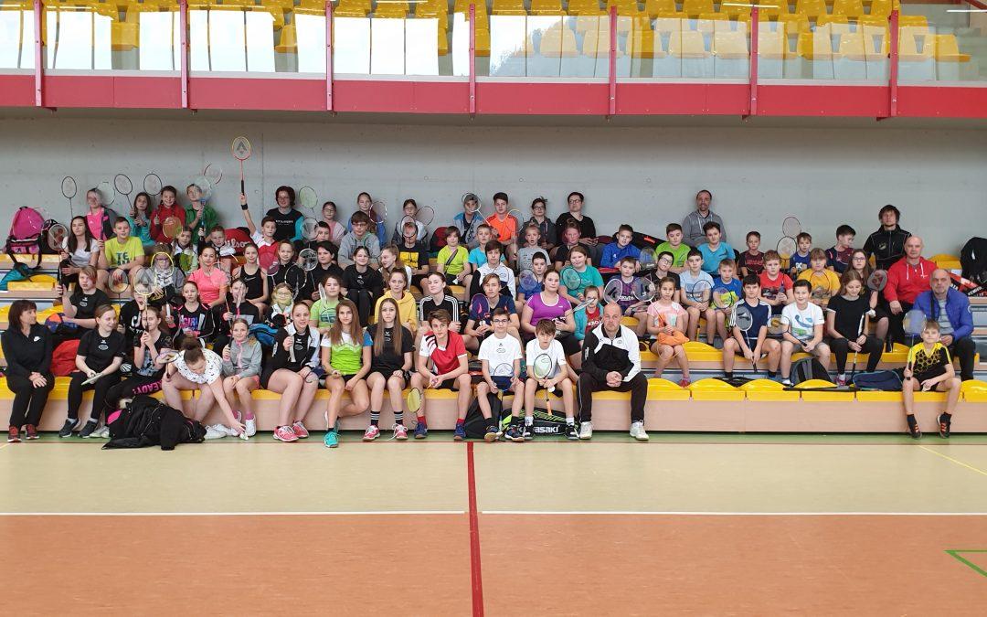 Badminton – področno tekmovanje